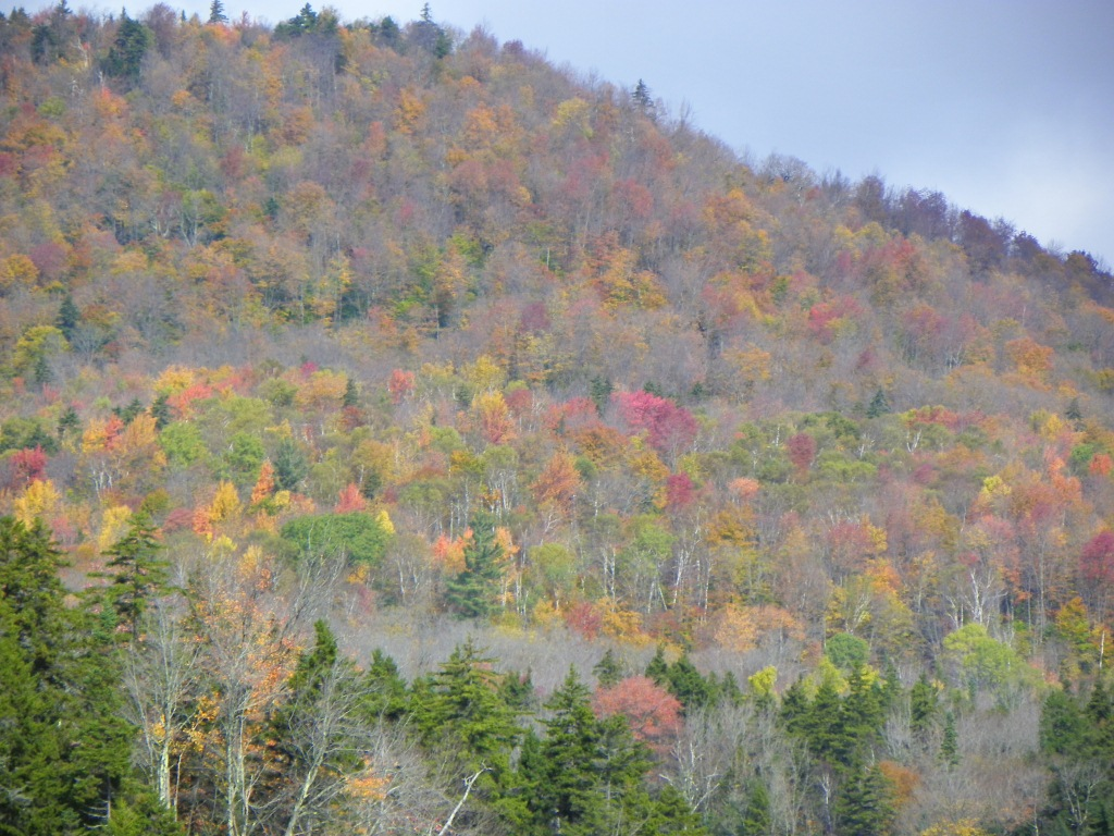 Vermont Foliage: Taking My Own Advice, Part II | The View from1024