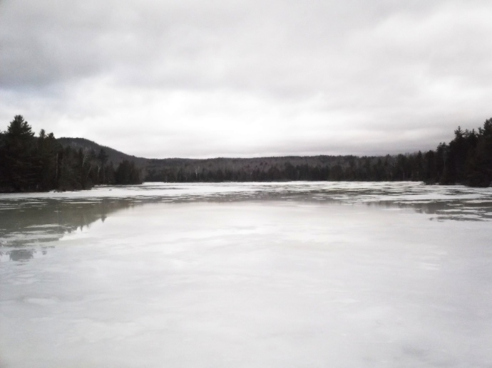 January thaw in Vermont