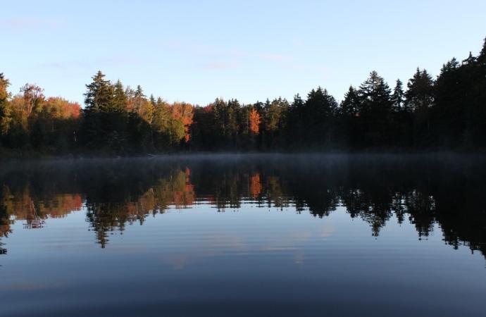 October morning 2