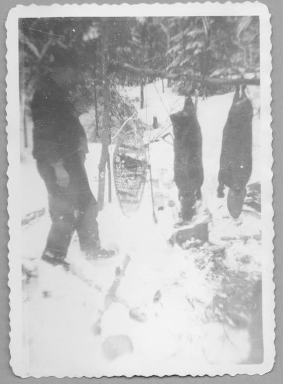 A Man, His Snowshoes, and Two Beavers