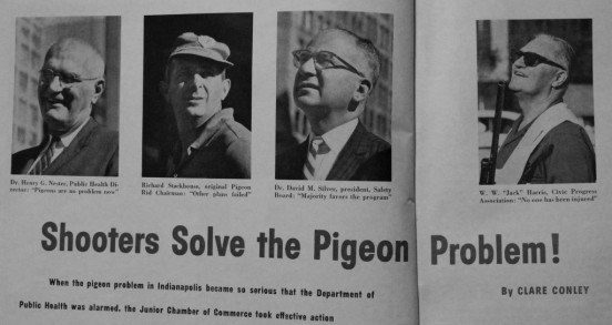 Shooters Solve the Pigeon Problem!