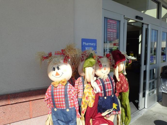 Saw a scarecrow down at Trader Joe's and his hair was... perfect!